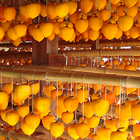 志賀町生産物直売所ころ柿