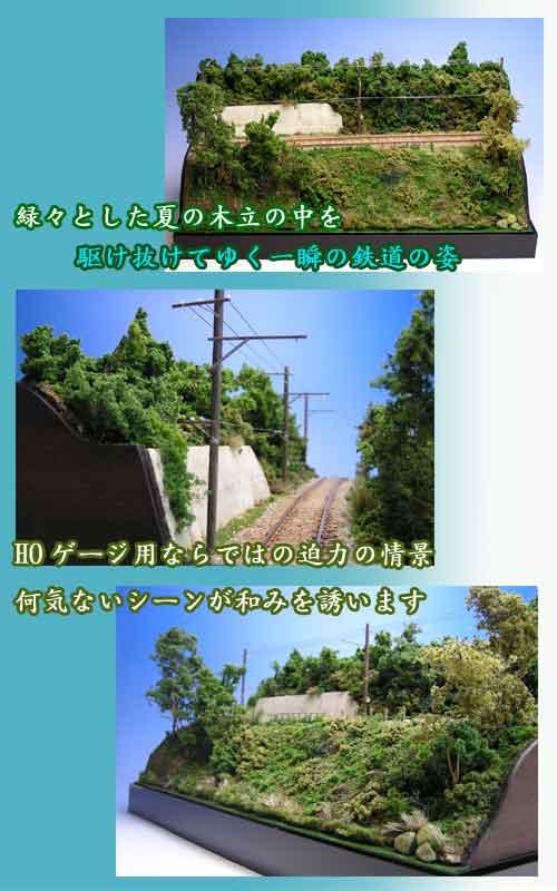 『木立夏景色・鉄道瞬景』紹介