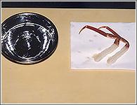 (15)身がある程度ふくらんだら、氷水からあげて水をきって(リードペーパーなどに置くとよい。)出来上がり。