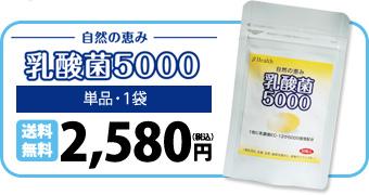 自然の恵み 乳酸菌5000 単品・1袋 送料無料2,580円
