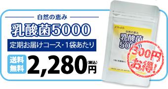 自然の恵み 乳酸菌5000 定期お届けコース・1袋あたり 送料無料2,280円