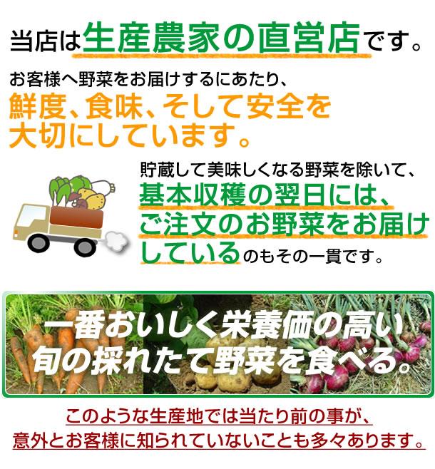 当店は生産農家の直営店です。お客様へ野菜をお届けするにあたり、鮮度、食味、そして安全を大切にしています。お届けする野菜は、貯蔵して美味しくなる野菜を除いて、基本収穫の翌日には、ご注文のお野菜をお届けしているものその一貫です。生産地では当たり前の事が、意外とお客様に知られていないことも多々あります。