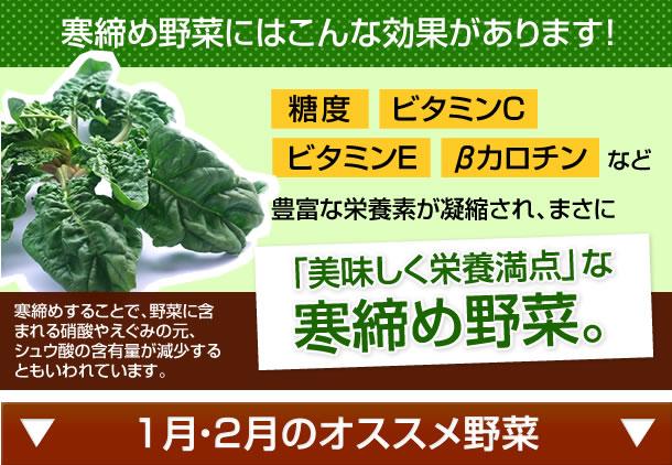 ■寒締め野菜にはこんな効果があります。糖度、ビタミンC、ビタミンE、βカロチンなどが凝縮され、まさに「美味しく栄養満点」な寒締め野菜。寒締めすることで、野菜に含まれる硝酸やえぐみの元、シュウ酸の含有量が減少するともいわれています。1月・2月のオススメ野菜