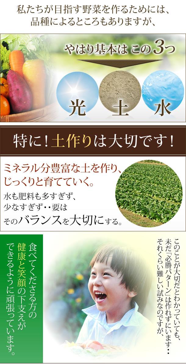 品種によるところもありますが、やはり基本は光、水、土。特に、土作りは大切です。ミネラル分豊富な土を作り、じっくりと育てていく。水も肥料も多すぎず、少なすぎず要はバランスを大切にする。このことが大切だとわかっていても、未だ「必勝パターン」は作れずにいますが、食べてくださる方の健康と笑顔の下支えができるように頑張っています。