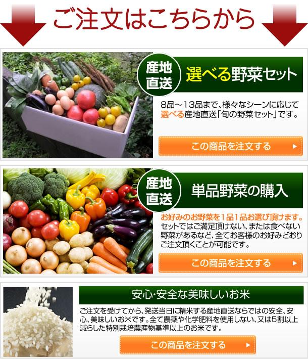 ご注文はここから!産地直送選べる野菜セット 産地直送野菜の単品購入 安心、安全な美味しいお米