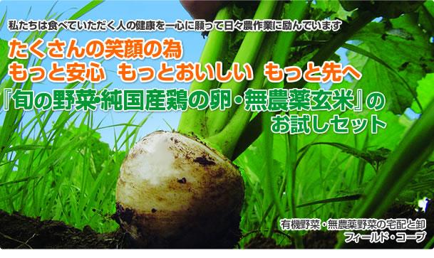 私たちは食べて頂く人の健康を一心に願って農作業に励んでいます。沢山の笑顔の為、もっと安心、もっと美味しい、もっと先へ。「送料無料・お一人様一回限りの限定」旬の無農薬野菜と純国産鶏の産みたて卵、無農薬玄米のお試しセット