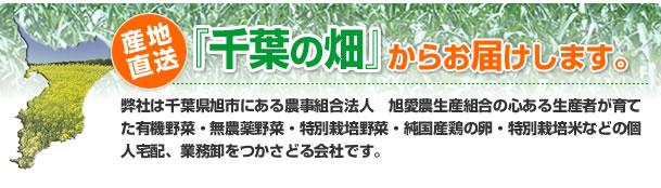 産地直送、千葉の畑からお届けします。当店は、千葉県旭市にある農事組合法人、旭愛農生産組合の心ある生産者が育てた、無農薬野菜、有機野菜、特別栽培野菜、純国産鶏の卵、特別栽培米を個人宅配、業務販売しております。