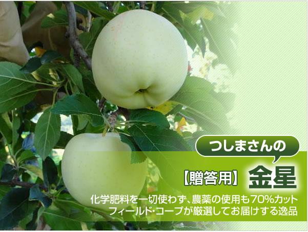 【贈答用】金星 化学肥料を一切使わず、農薬の使用も70%カット フィールド・コープが厳選してお届けする逸品