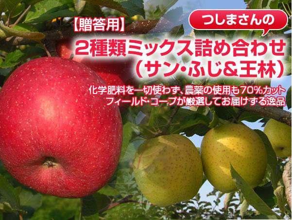 【贈答用】サン・ふじ&王林 化学肥料を一切使わず、農薬の使用も70%カット フィールド・コープが厳選してお届けする逸品