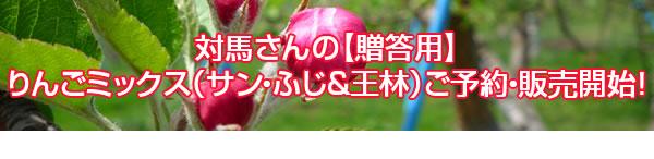 対馬さんの【贈答用】りんごミックス(サン・ふじ&王林)ご予約・販売開始!