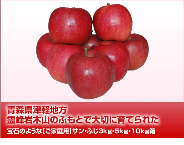 青森県津軽地方霊峰岩木山のふもとで大切に育てられた宝石のような【ご家庭用】サン・ふじ3kg・5kg・10kg箱