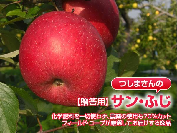 【贈答用】サン・ふじ 化学肥料を一切使わず、農薬の使用も70%カット フィールド・コープが厳選してお届けする逸品