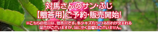 対馬さんのサン・ふじ【贈答用】ご予約・販売開始!