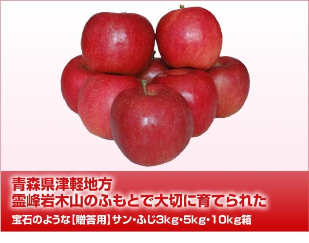 青森県津軽地方霊峰岩木山のふもとで大切に育てられた宝石のような【贈答用】サン・ふじ3kg・5kg・10kg箱