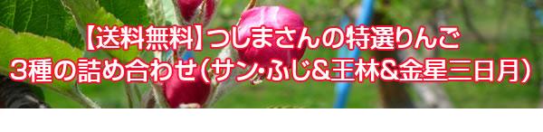 【送料無料】つしまさんの特選りんご3種の詰め合わせ(サン・ふじ&王林&金星三日月)