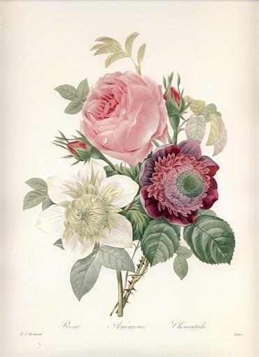 ルドゥーテ 花束の絵