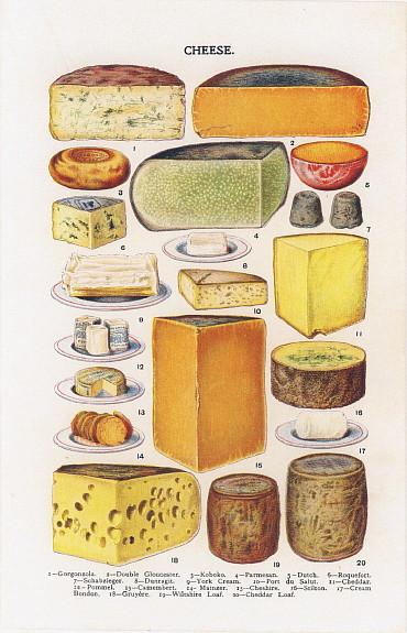 お菓子の絵 ビートン夫人 チーズの絵