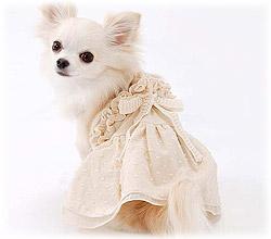 犬の服 フリル付キャミワンピース