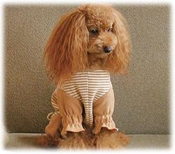 犬用ボーダーパジャマ